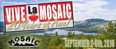 2010 Mosaic International Event Banner
